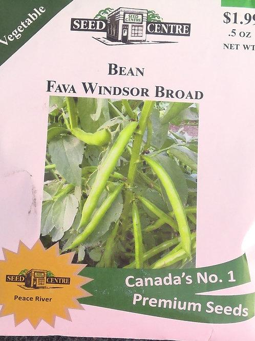 Bean Fava Windsor Broad