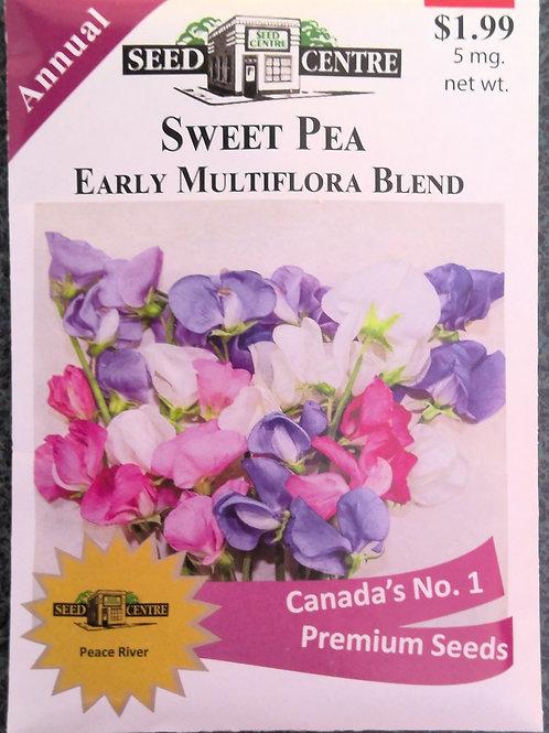 Sweet Pea Early Multiflora Blend (Annual Flower)