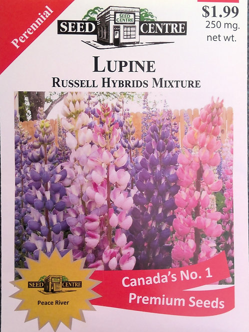 Lupine Russell Hybrid Mix (Perennial)