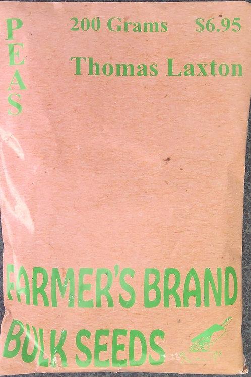 Peas Thomas Laxton (Bulk Pack)