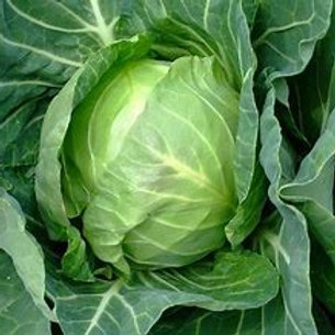 Copenhagen Cabbage