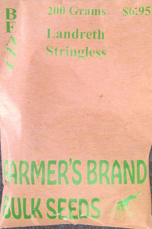 Beans Landrath Stringless(Bulk Pack)