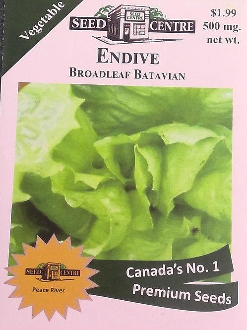 Endive Broadleaf Batavian