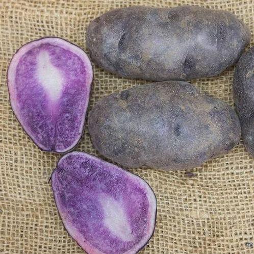 Seed Potatoes - Russian Blue 2.5 lb Bag