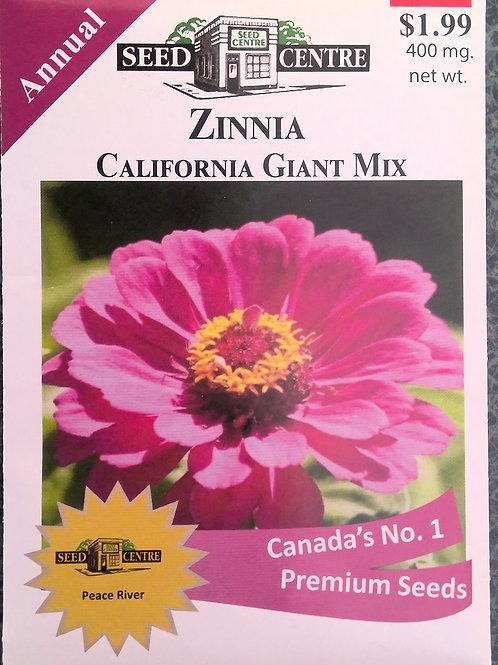 Zinnia California Giant Mix (Annual Flower)