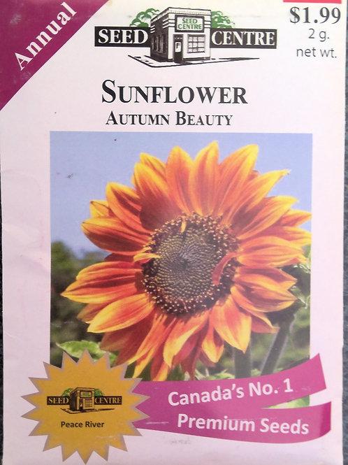 Sunflower Autumn Beauty (Annual Flower)
