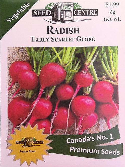 Radish Early Scarlet Globe
