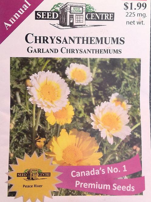 Chrysanthemum Garland (Annual Flower)