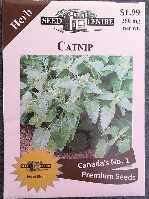 Catnip (Herb)