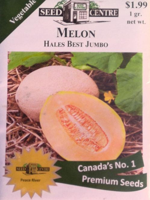 Melon Hales Best Jumbo (Canteloupe)