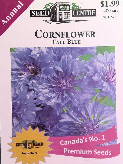 Cornflower Tall Blue (Annual Flower)