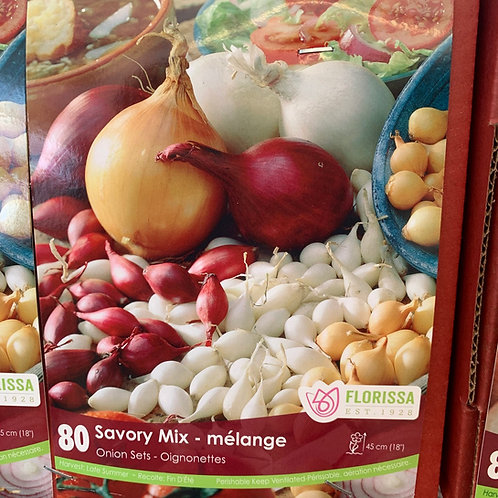 Onion Sets - Savoury Mix 80 Bulbs (in store pick up only)