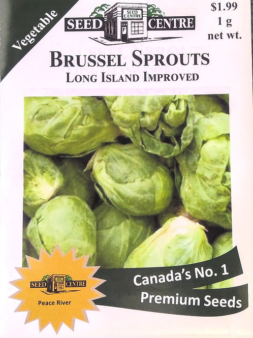 Brussels Sprouts Long Island Improved