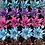 Thumbnail: Kosmik Cactus Succulent