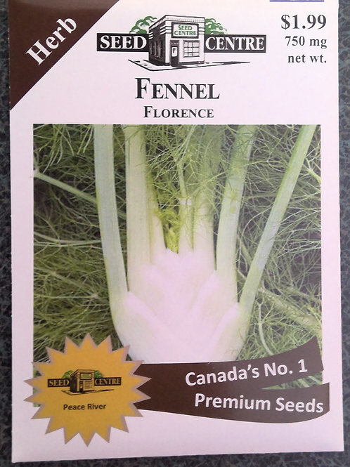 Fennel Florence (Herb)