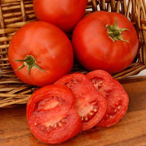Bobcat Tomato