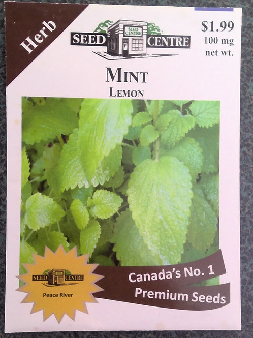 Mint Lemon (Herb)