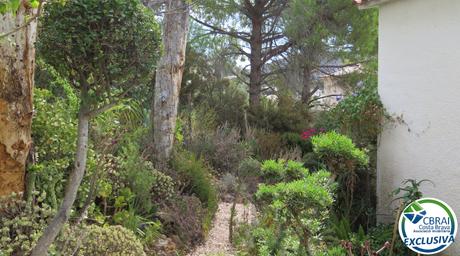 Jardín_2.png