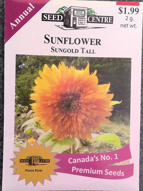 Sunflower Sungold Tall (Annual Flower)