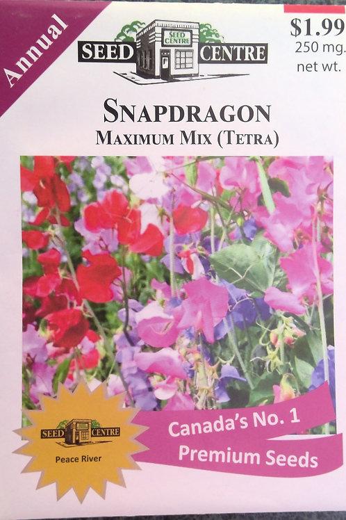 Snapdragon Maximum Mix (Annual Flower)