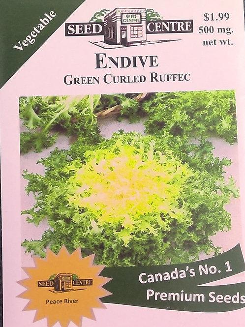Endive Green Curled Ruffec