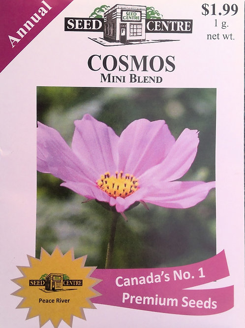 Cosmos Mini Blend (Annual Flower)