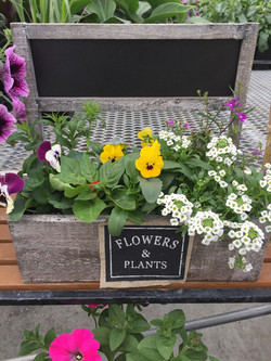 Mothers Day Chalkboard Planter