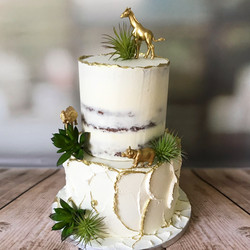 African animal cake