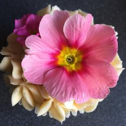 Edible flower cupcakes
