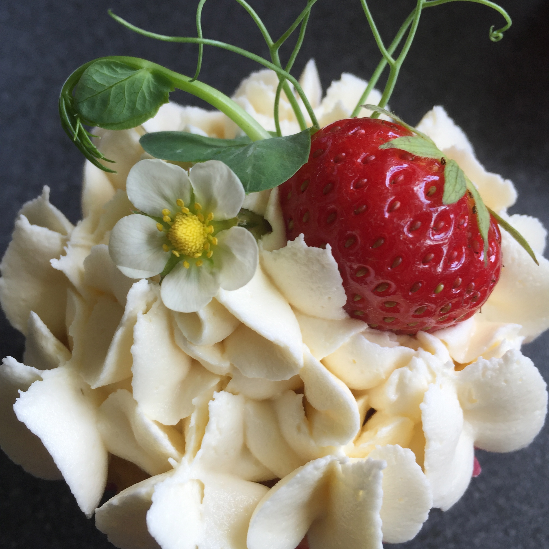 Strawberry garden cupcake