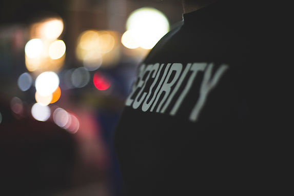 Security & Public Safety Consultants