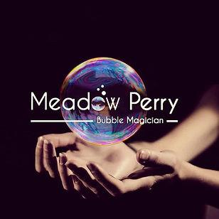 Meadow Perry Bubble Magician Branding Lo