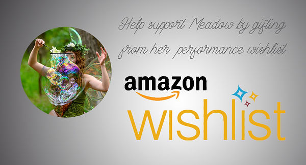 Support Meadow Perry amazon wishlist.jpg