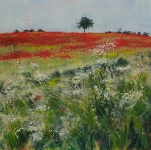 LONE TREE AND POPPIES