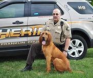 Saint-Hubert,chiens,élevage,mantrailing,pistage,Delanoirealliance,instructeurk9,detection,recherche,sauvetage