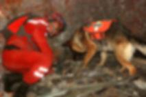 Berger allemand de sauvetage à l'élevage De La Noire Alliance