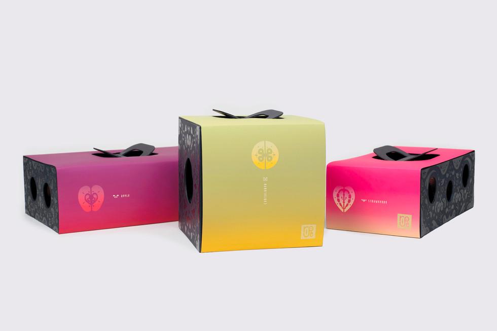 Fruit Gift Packaging