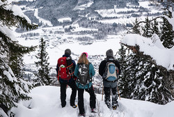 Winter hikes without skis