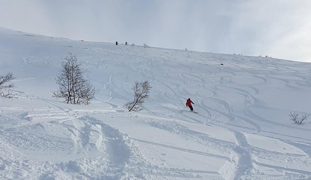 Raundalsryggen på ski. Nedkjøring fra Olsskavlen.