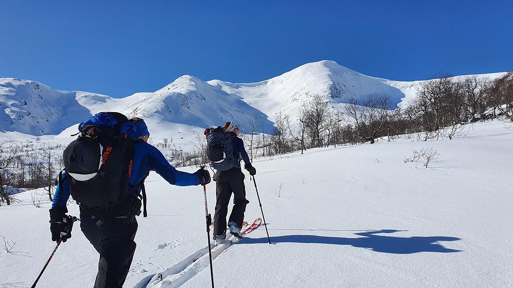 Raundalsryggen på ski. På vei mot Horndalsnuten fra Skiple.