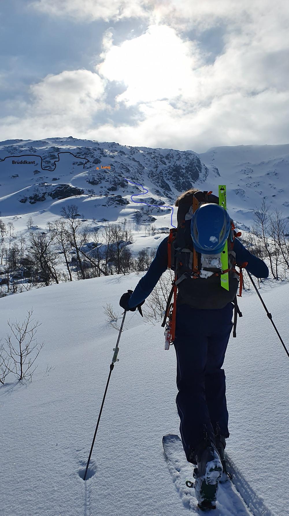 På vei mot Skipadalsnuten
