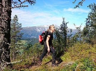 Hiking Sverrestigen near Voss