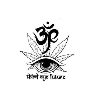 Third Eye Future Logo