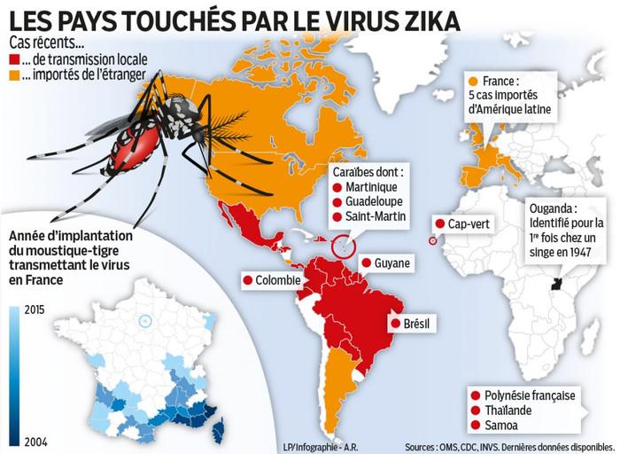 Virus ZIKA & PMA