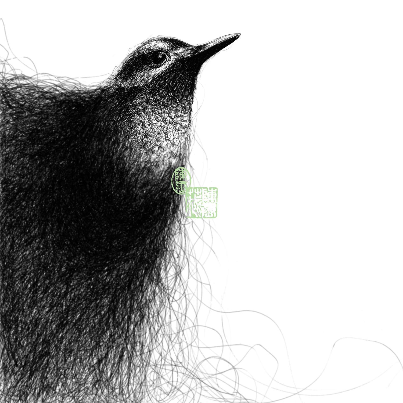 Black Flaming Bird {I}