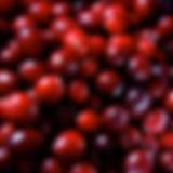 cranberries_562459.jpg