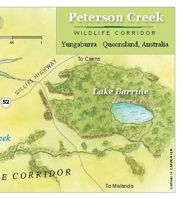Peterson Creek Wildlife Corridor Map