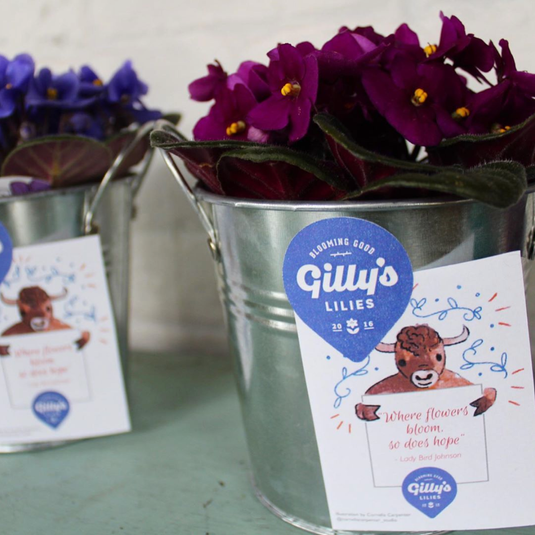 Gilly's Lilies Potted Flower Tags