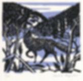 Ashcroft Fox.jpg