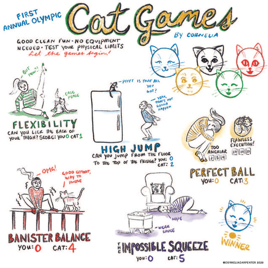 Cat Olympics Towel Design